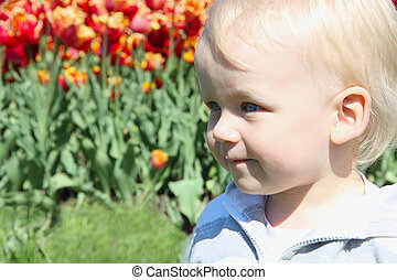 Small boy portrait on red tulips background