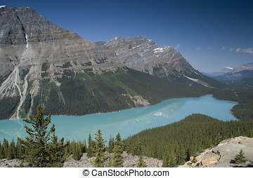 Banff National Park Peyto Lake