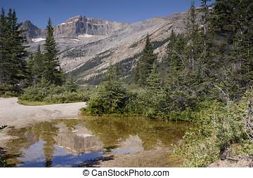 Banff National Park Bow Lake - Bow Lake Banff National Park...