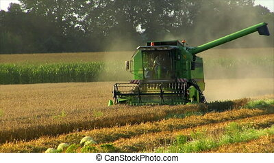 combine harvester at work - A combine harvester at work. No...