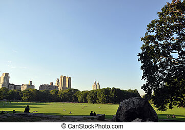 The great lawn in Central Park New York City
