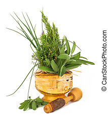 Healing herbs with mortar and pestle - Healing herbs and...