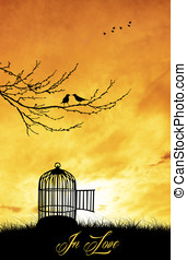 bird cage at sunset