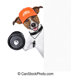 fitness dog banner - personal trainer dog with dumbbell...