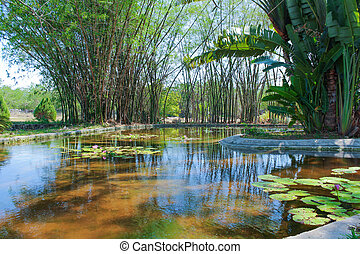 Pond designed as a landscaping element