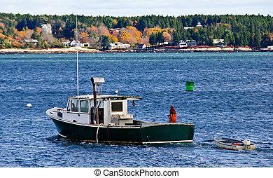 langosta, pesca, barco