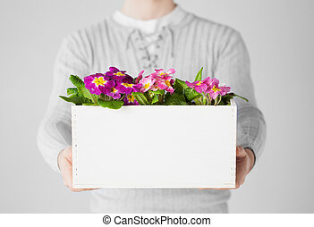 man holding big pot with flowers - close up of man holding...