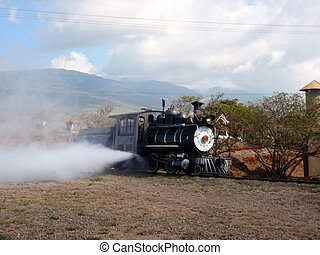 Sugar Cane Steam Train lets off steam - Old Sugar Cane Steam...