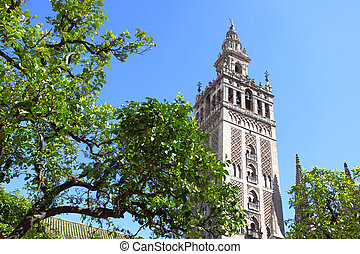 Giralda - Orange trees at courtyard of Cathedral and Giralda...