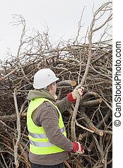 Worker with a branch in hands at the big pile of twigs