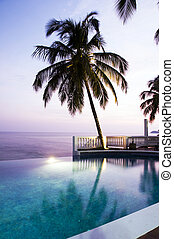 luxury swimming pool with coconut tree Caribbean sea -...