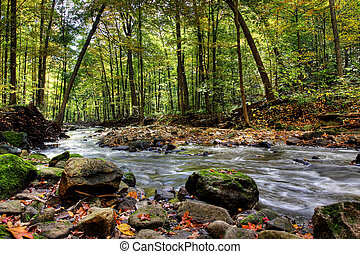 small forest river - Beautiful waterfall on small forest...