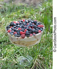 trifle dessert with wild berries
