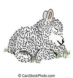 Baby lamb vector - Hand drawn baby lamb vector