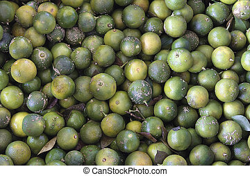 Calamansi Limes Background - Calamansi Green Limes Closeup...