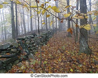 Appalachian Trail - Scene along the Appalachian Trail