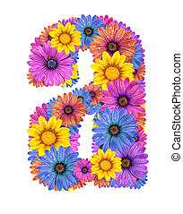 Alphabet from flowers - Alphabet of colorful dewy flowers,A