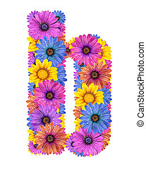 Alphabet from flowers - Alphabet of colorful dewy flowers,B