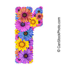 Alphabet from flowers - Alphabet of colorful dewy flowers,R