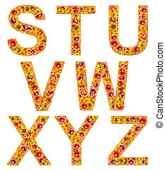flowers letters S-Z - Flowers letters from S to Z on a white...
