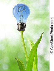energy concepts - power line in the bulb