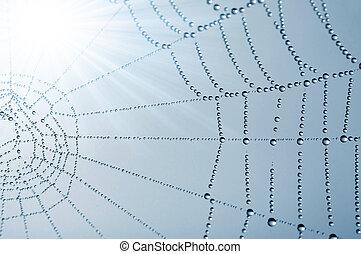 araignés, toile