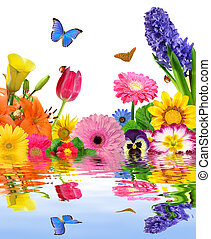 floral background with ladybugs and butterflies