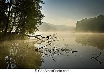 Fog and lake at sunrise in fall
