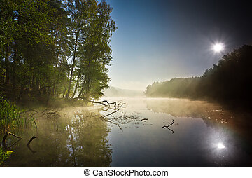 Foggy lake at sunrise in autumn