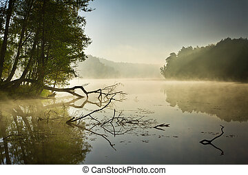 Fog over the lake at sunrise