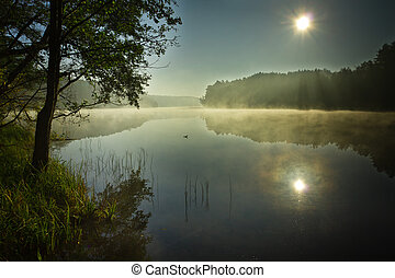 Sunrise at foggy lake in autumn