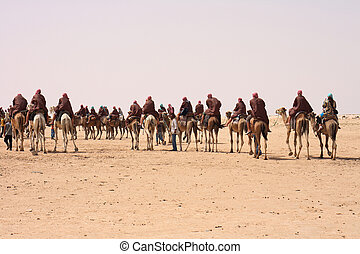 sahara with camels and people from the tunisia