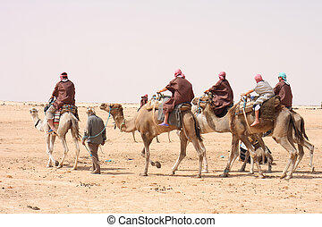 sahara with camels and people form tunisia
