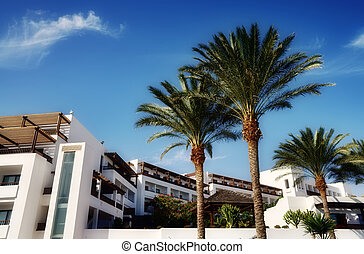 Holiday apartments in Lanzarote - Holiday apartments on...