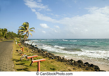undeveloped Sally Peach beach palm trees on Caribbean Sea with bench seats coconut trees Big Corn Island Nicaragua Central America