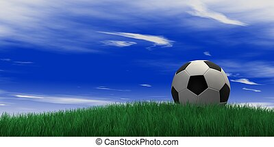 soccer ball on grassand sky background