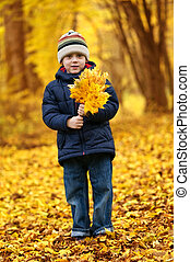 boy with leaves in autumn park