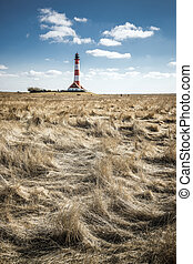 Gras with lighthouse