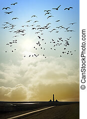 Lighthouse with birds - Lighthouse in Westerhever at the...