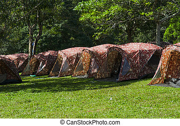 Camping site with nature