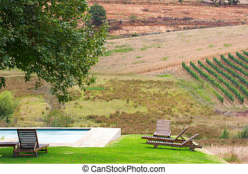 Vineyards in Stellenbosch, Western Cape, South Africa...