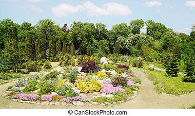 alpine garden - Landscaping, alpine garden with rocks and...