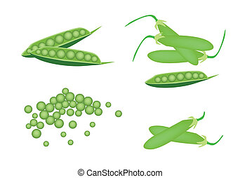A Set of Delicious Sweet Green Pea - Vegetable, An...