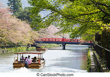 Japan's Heian Shrine cherry for adv or others purpose use