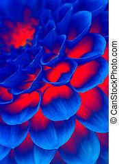 dark blue fire flower - abstract background. dark blue fire...