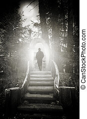 abstract man silhouette - abstract spooky forest silhouette...