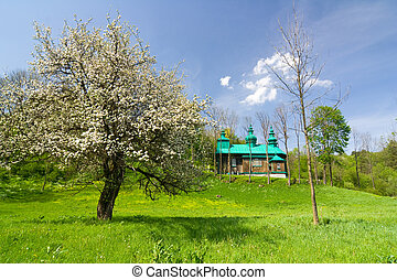 An old Orthodox church in Szczawne, Beskid Niski Mountains,...