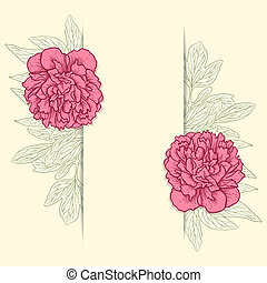 Vector greeting card with peonies - Vector illustration for...