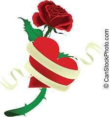 Heart and Rose with Banner Vector