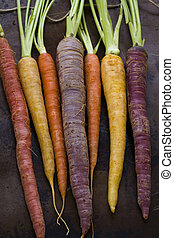 Organic Vegetables - Organic rainbow carrots from the local...